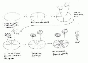 タンポポの描き方1