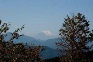 紅葉台辺りから見た富士山