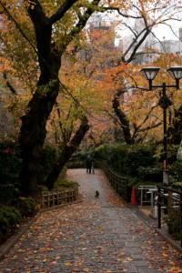 五反田児童センター手前の坂 2011年12月8日撮影