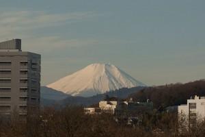 富士山 多摩川より