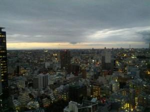 夕方。薄曇りの冬空。こういう空も、私は好きだ。